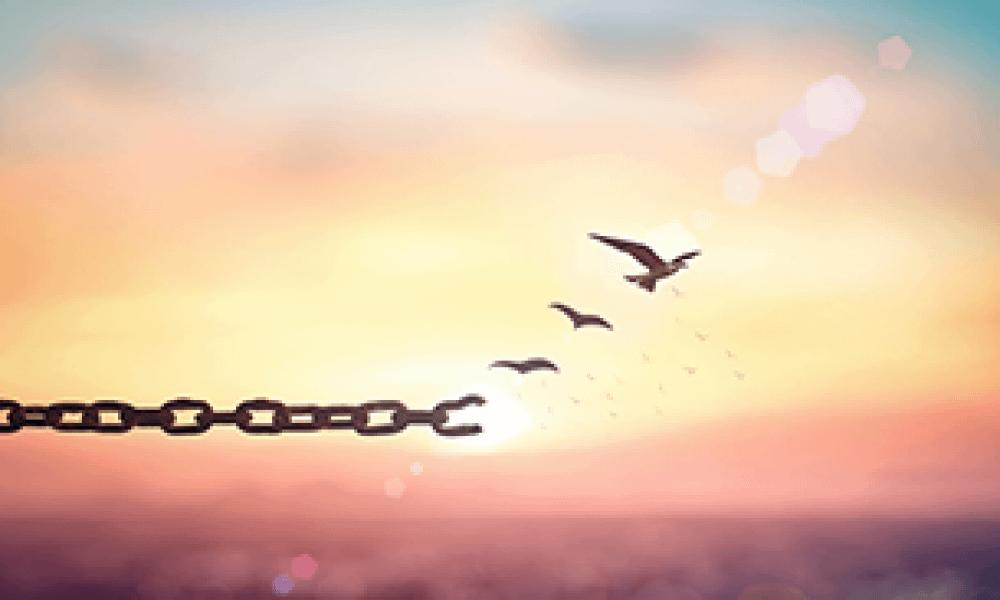 Vrijheid in flexibiliteit